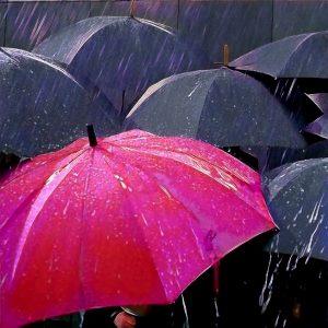 paraguas rojo destacando frente a paraguas grises